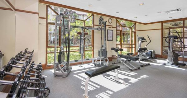 Fitness Centre   Steam   Jacuzzi   Sauna