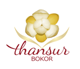 Thansur Bokor Higland Resort